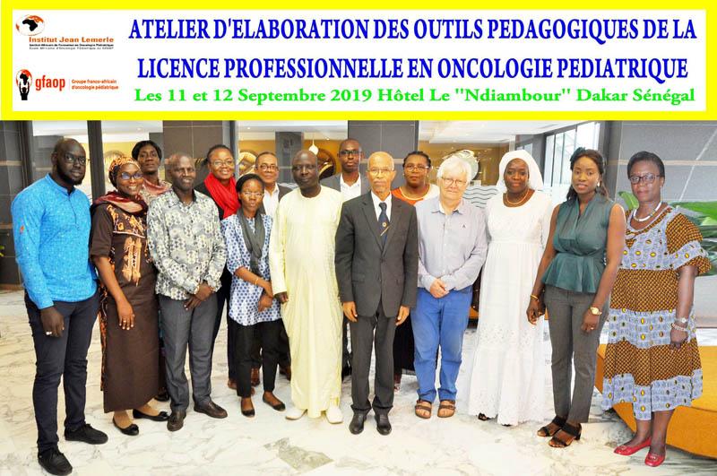 atelier d'élaboration du programme de licence professionnelle pour les infirmiers ,un enseignement prévu dans le cadre de l'Institut Jean Lemerle